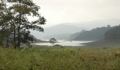 Periyar National Park and Wildlife Sanctuary