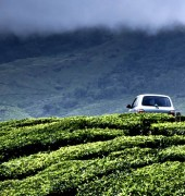 Munnar Honeymoon 3 Days Package