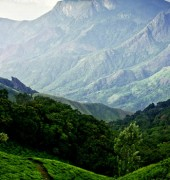 Beauty of Kerala 4 Days Tour Package