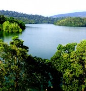 Kerala Jungle Safari 5 Days Tour Package