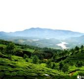Top 5 Must Visit Destinations in Kerala