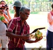 15 Things You Must Do in Kerala