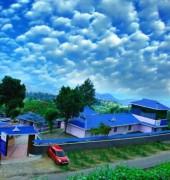 Mist Land Resort