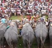 Cultural History of Kerala