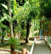 Sreedhari Ayurvedic Resorts