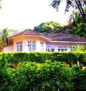 Green Land Farm Houses