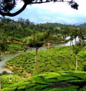 Munnar With Houseboat 4 Days Tour Package