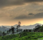 Top Hill Stations in Kerala
