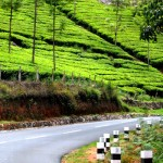 Munnar Road