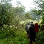 Hiking in Thekkady