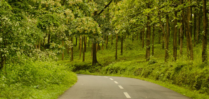 wayanad location how to reach wayanad