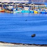 Azhikkal fishing harbour