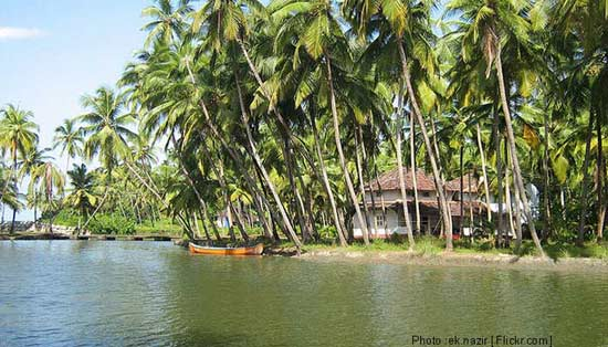 Kannur Beach House Kannur- Book Online Kannur Beach House ... | 550 x 314 jpeg 44kB