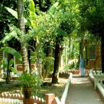 Sreedhari Ayurvedic Resorts Thrissur