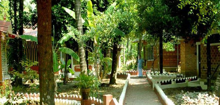 Sreedhari Ayurvedic Resorts Thrissur