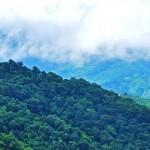 Misty Mountains - Munnar