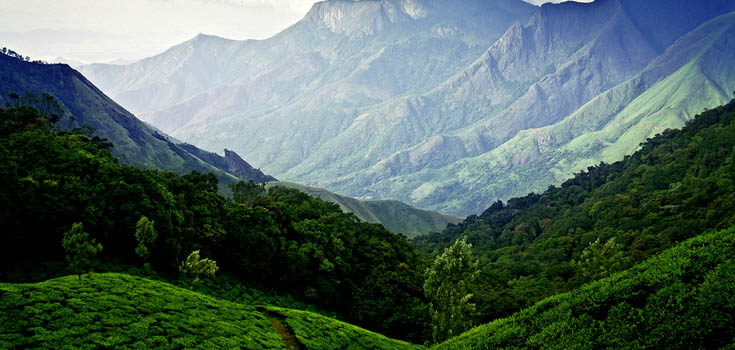 Hills and Beaches Kerala 5 Days Package