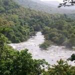 Chalakudy River Kerala