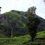 Chembra Peaks in Wayanad Kerala