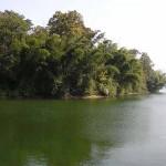 Parambikulam Lake Kerala