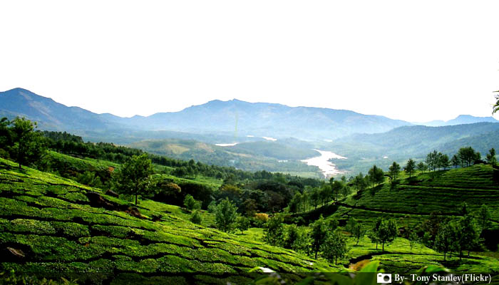Top 5 Must Visit Destinations in Kerala