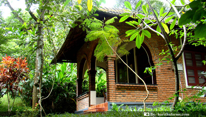 The Pimenta Homestay