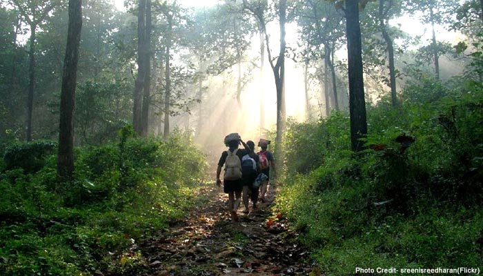 way to sabarimala