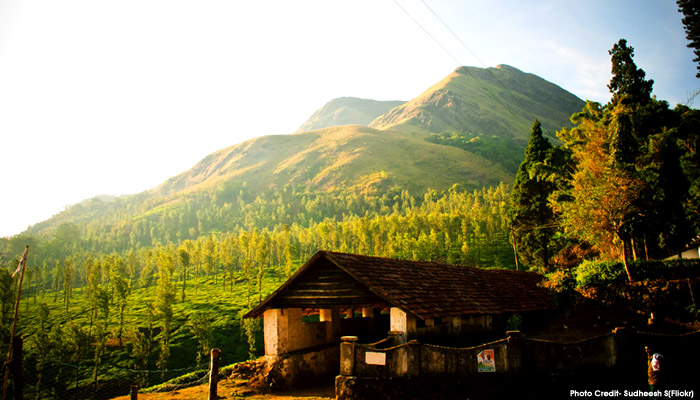 10 Top Trekking Destinations in Kerala