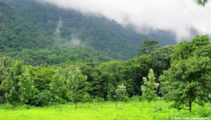 Dhoni Hills